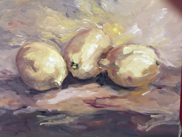 Lemons, SL 16