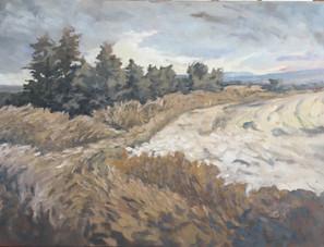 River of Grass, LS 914
