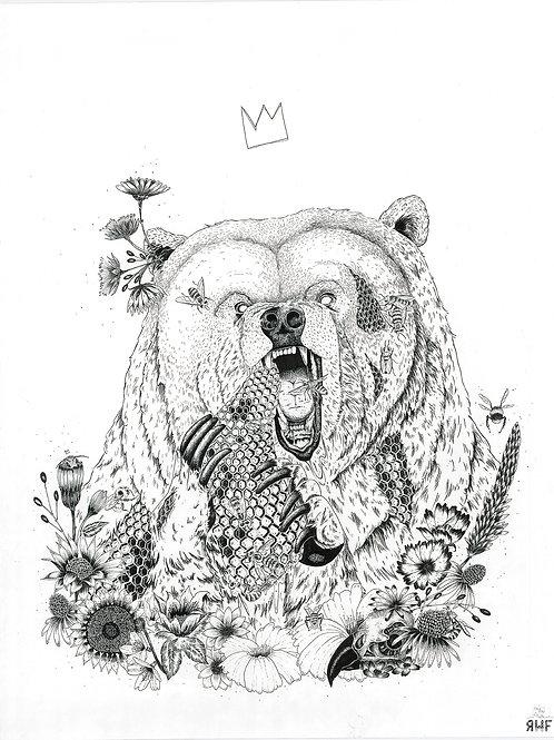 Honey bear - sérigraphie en tirages limités