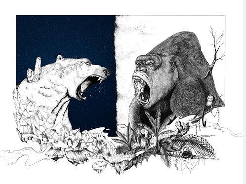 Ours polair vs Gorille