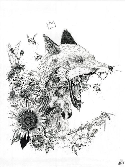Honey Fox - sérigraphie - impressions en tirages limités, à la main