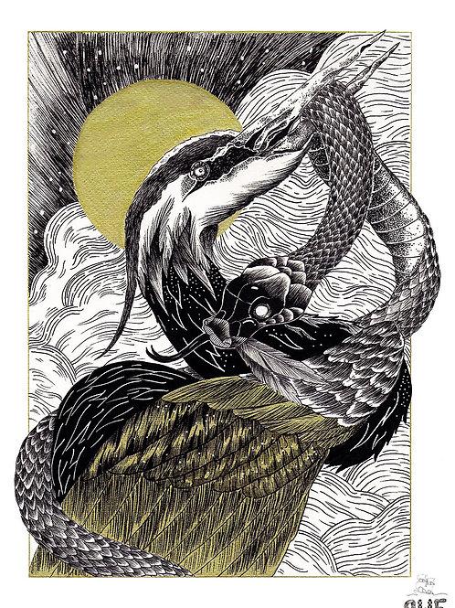 Héron et serpent - reproductions en tirages limités