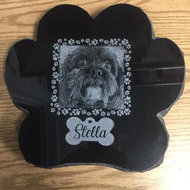 Stella .jpg