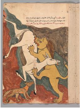 Kalila wa Dimnah (Persia / Iran) #2