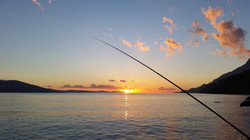 fishing-69224