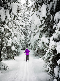 photo-of-a-person-hiking-in-snow-877864.