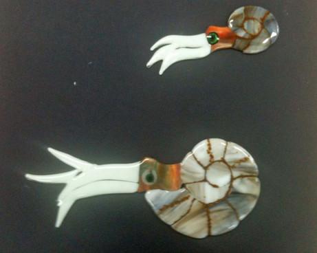 The fused ammonites