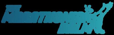 Logo_TMB_couleur.png