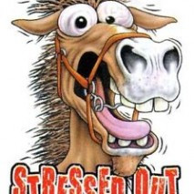 Stressed Out..