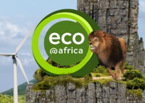 DW Eco @ Africa
