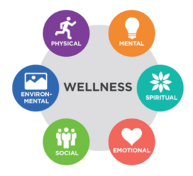wellnessinfographic-300x300.png