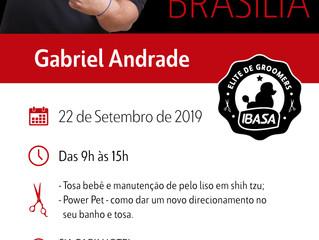 Ibasa promove workshop Pet Grooming em Brasília