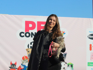 Pet Concurso Hercosul agita o I Fashion Outlet, em Novo Hamburgo