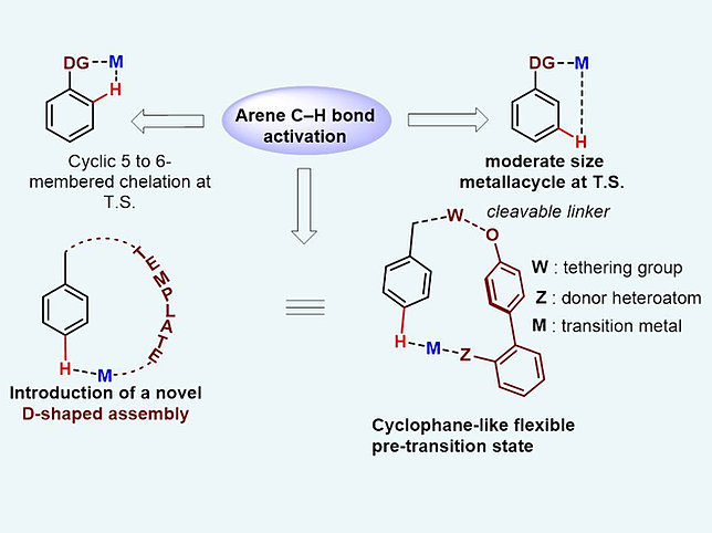 c h functionalisation Application of iridium-catalysed c–h borylation to the functionalisation of indoles researchspace/manakin repository.