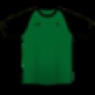 Camisa-02.png