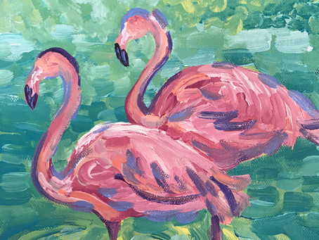 Learning from Flamingos