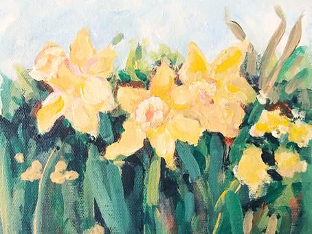 Confused Daffodils