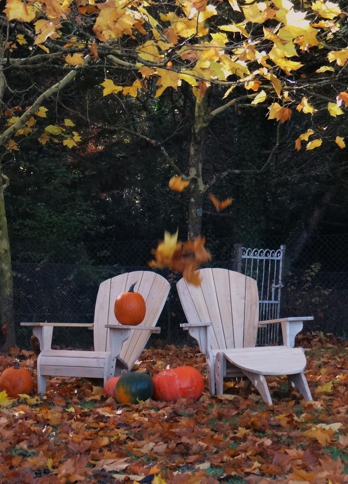 Le Fauteuil Adirondack Verneuil vous souhaite une Happy Halloween !