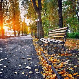 autumn_walk__18480.1561387442.jpg