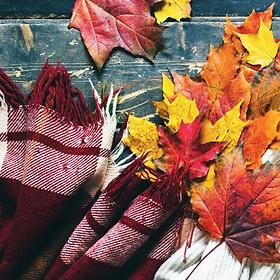 autumn_flannel__32816.1534275488.webp