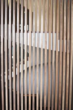 家居設計 Home Design 熱帶雨林 Tropical alike House (14)