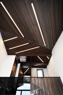 家居設計 Home Design 熱帶雨林 Tropical alike House (1)