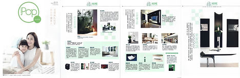 MetroPop Interview on Greener Home Idea