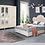 Thumbnail: Mercan Yatak Odası