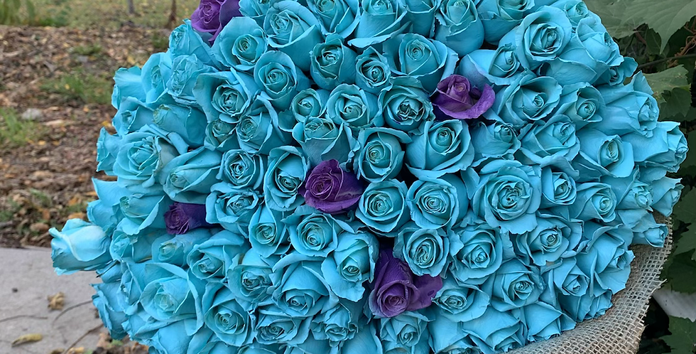 100 Roses Wrapped