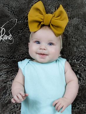 evelyn lane hair bows mustard nylon