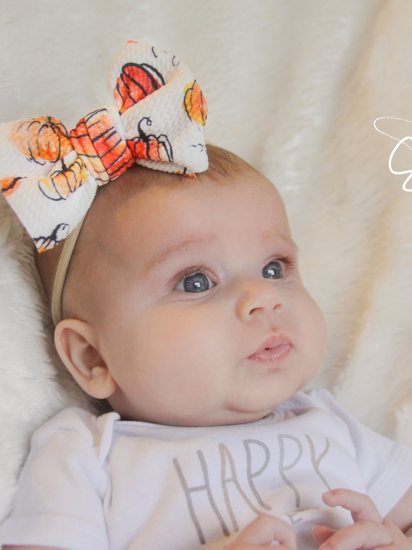 evelyn lane hair bows pumpkin thanksgivi
