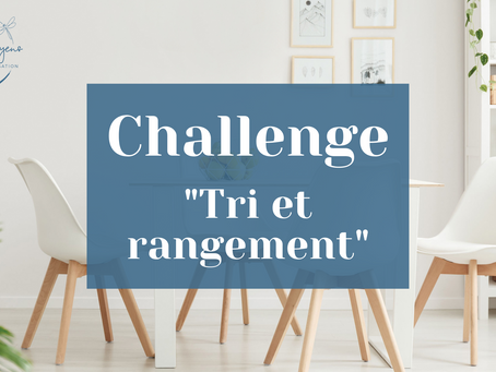 """Challenge """"Tri et rangement"""""""