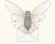 An invitation to the cicada party