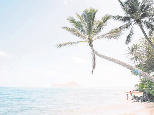 Want to go to Hawaii? Be prepared.