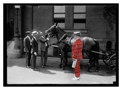 le cheval doué