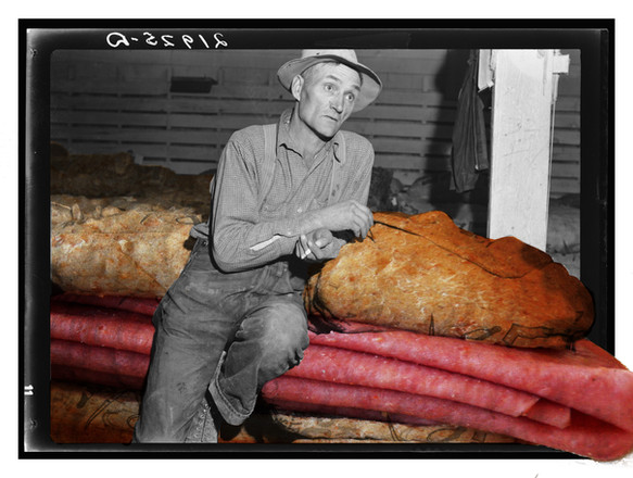 sandwich-farmer.jpg