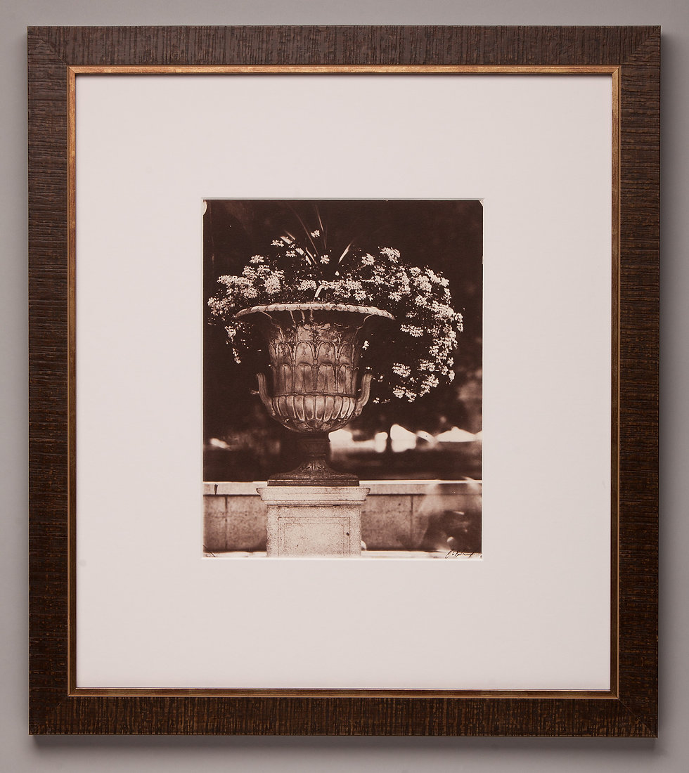 centennial_capital flower pot_salt print