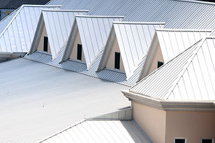 TPC Roofing - Pitched Metal Roof.jpg