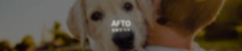 AFTO 동물권보호.png