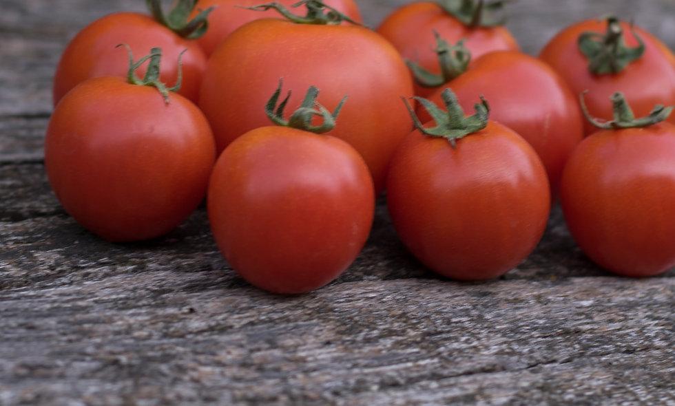 Tomaten Cherry-Strauchtomaten