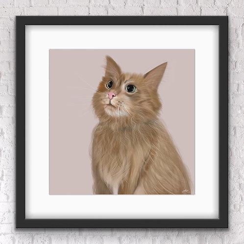 Individual Animal Portrait