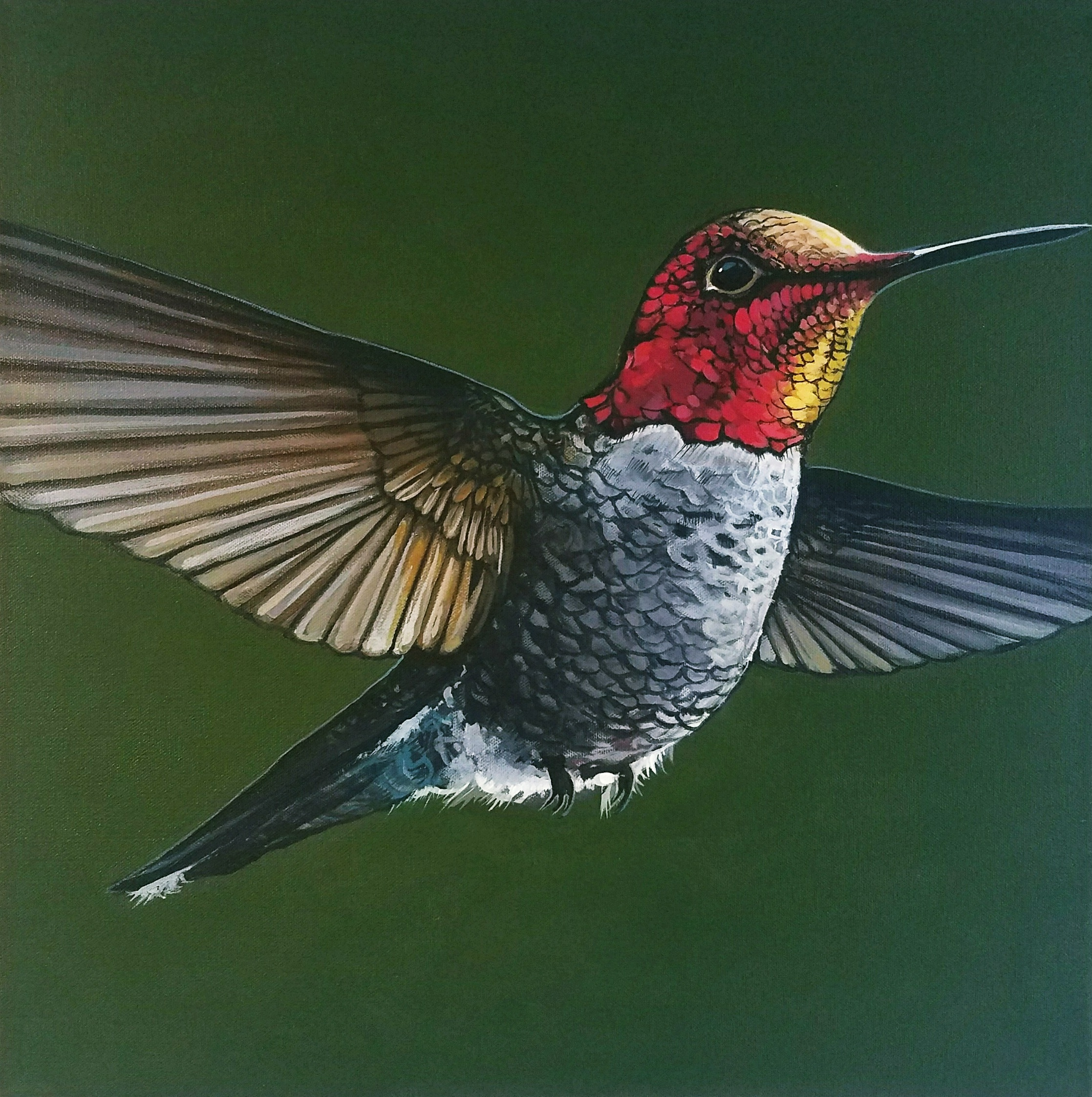 paintingshummingbirdjoycevelvia
