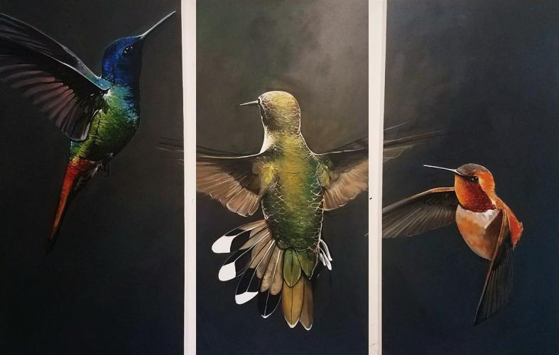 paintingsanimalshummingbirdscarlosswithmargins