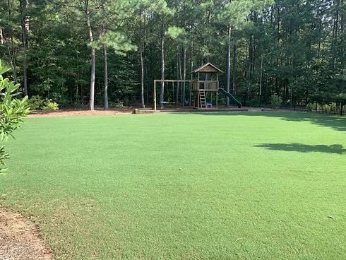 Beautiful Lawn in Watkinsville, GA