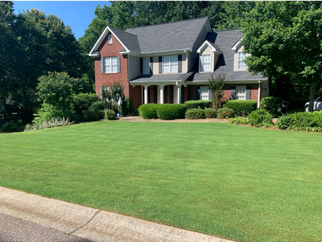 Mowing Tips for a Great Lawn!