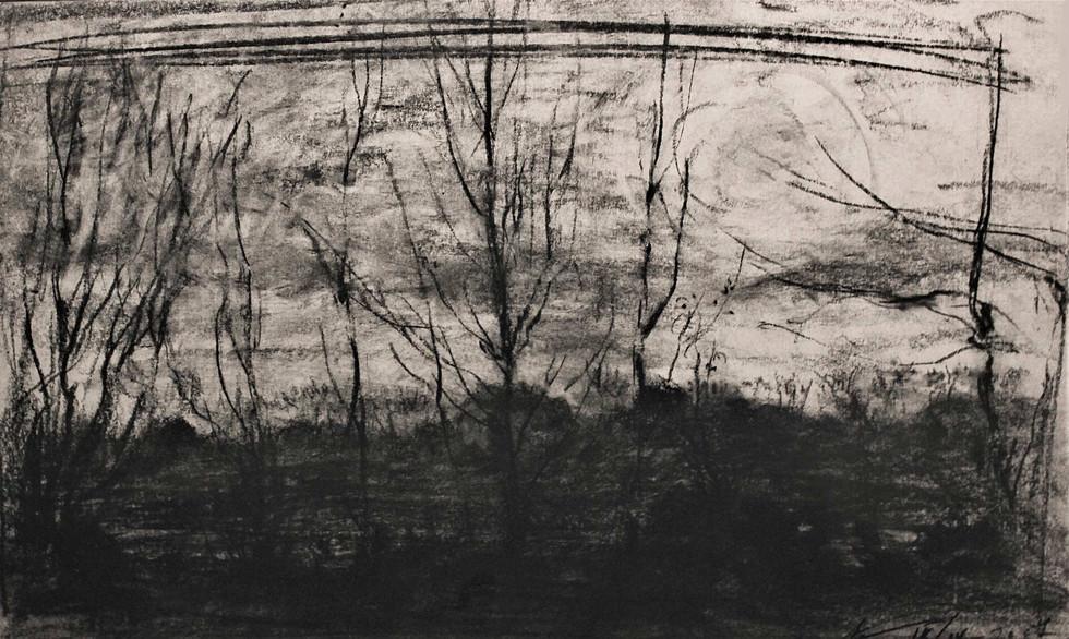 """""""Вечер"""". Бумага, пастель. 42х67. 2007."""
