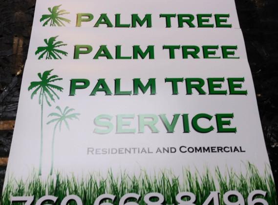 palm tree mag.jpg