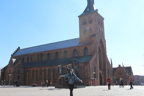 Tur til Odense