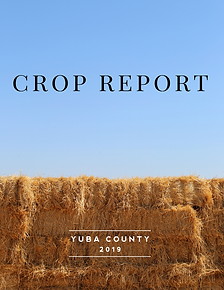 Yuba County Crop Report 2019.png