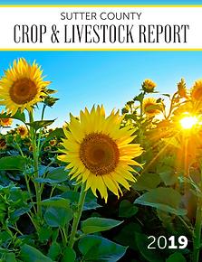 Sutter County Crop Report 2019.png